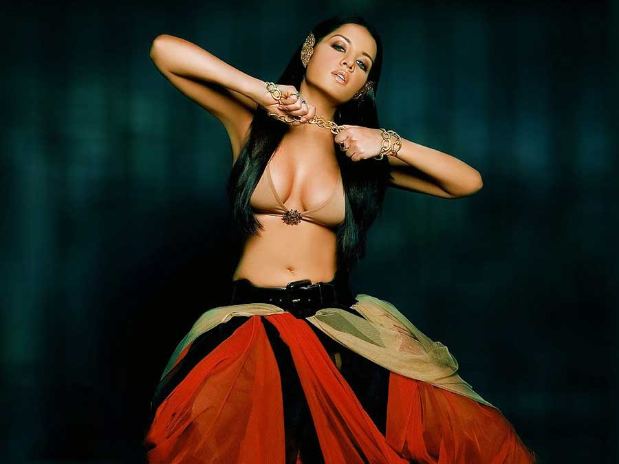 Celina Jaitley Hot Cleavage Pics