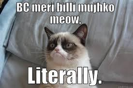 Billi Memes