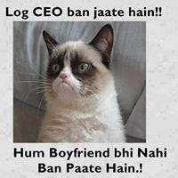 Log CEO Ban Jate Hain Billi Troll
