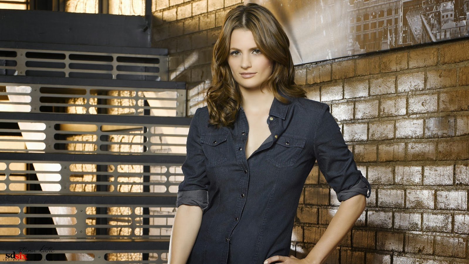 Stana Katic Facebook